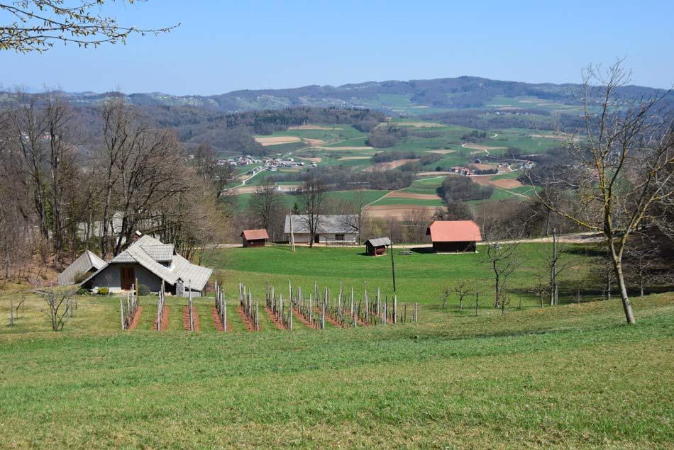 Z Golobinjeka se odpre razgled na osrednjo mehko zaobljeno Dolenjsko pokrajino.