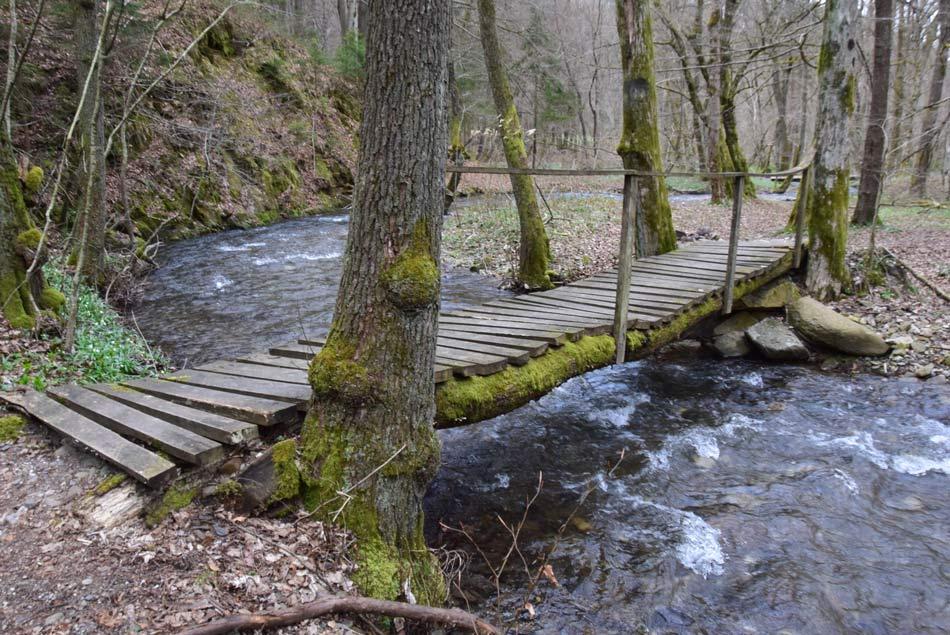 Brv čez potok Besnico nedaleč od vznožja Debnega vrha.