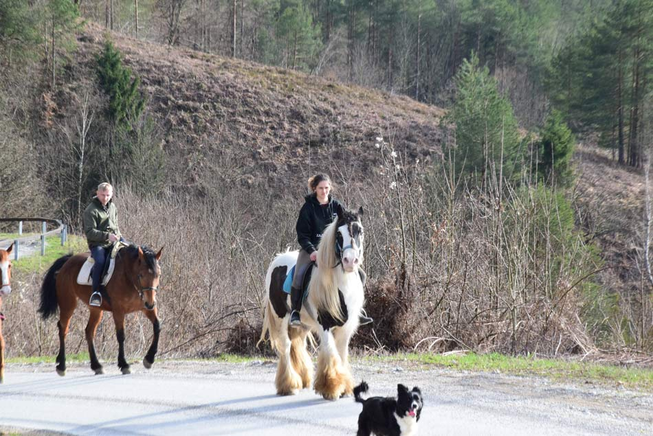 Dva konjenika na poti proti Lazarjevem vrhu nad dolino Besnice.