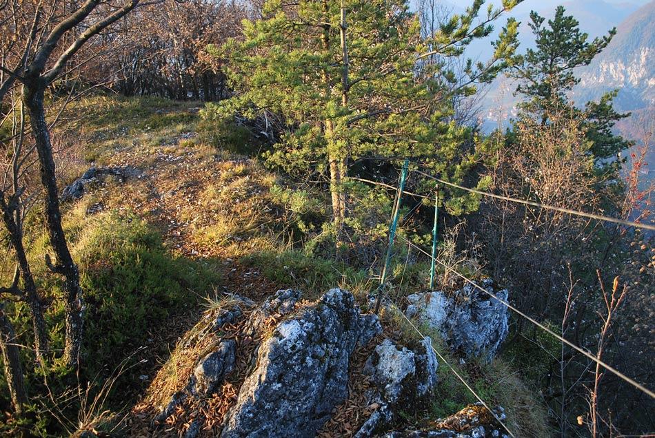 Del izleta na Divjo goro je zavarovan z jeklenico.