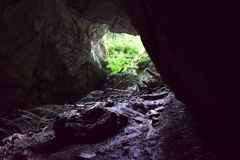 V Tkalci jami v katero ponikne reka Rak.
