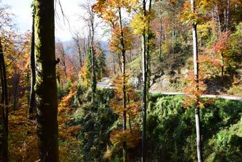 Bajdinški potok je znan po svojih slapovih, a je pot do njih sorazmerno težavna, zato gremo po spodnjem delu njegove grape.