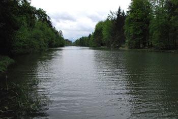 Braslovškemu jezeru se ne pozna, da je nastalo z zajezitvijo Trebnika, tako lepo se je zlilo z okolico.