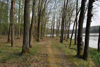 Zdravilni gaj Bukovniško jezero ima obiskovalce iz vse Slovenije.