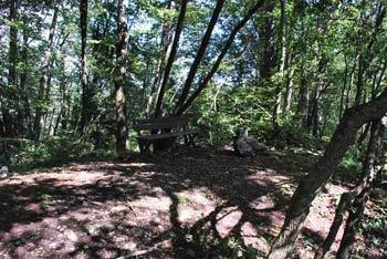 Družinski izlet za otroke na Cicelj v zahodnem Posavskem hribovju je primeren za starejše.