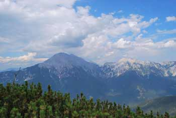 Cjanovca se nahaja visoko nad Preddvorom in vzhodno od Storžiča.