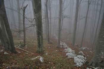 Na skrivnostni Črni glavi se nahaja svetišče nedavno izginulih starovercev.