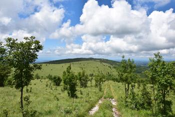Golič se nahaja na planoti poleg Kojnika in Lipnika.