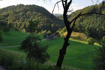 Krožna pot čez Gorenjo goro nudi lep razgled na Trebni vrh. Nahaja se na zgornjem toku reke Mirne.