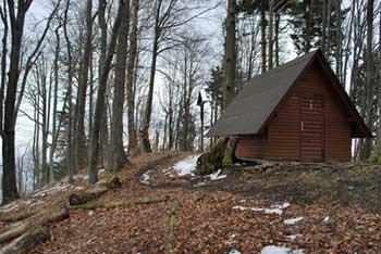 Gozdnik je eden najvišjih vrhov v Posavskem hribovju.