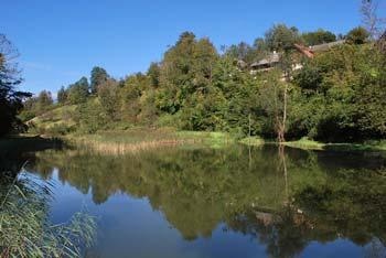 Potok Grabnarica teže ob vznožju Jelovice. Nahaja se na robu Ljubljanske kotline blizu Radovljice.