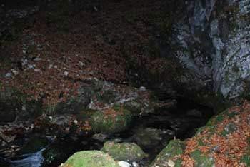 Izvir Ljubija se nahaja pod visokim Smrekovcem in romarskim Svetim Križem.