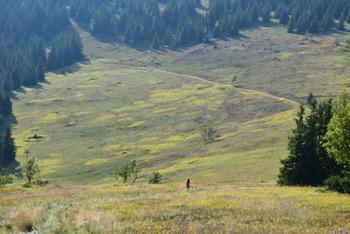 K Jezerskemu vrhu se odpravimo na poti do Ribniškega jezera, z njega pa gremo še na najvišji vrh Pohorja, to je Črni vrh.