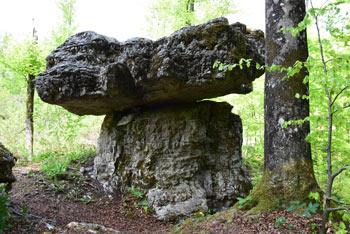 Do Kamnita mize, ki se ji reče tudi Tomaževa miza pridemo preko Žiri.