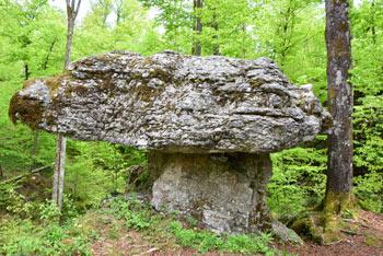 Kamnita miza se nahaja v kraški udorni kotanji. Nekateri ji rečejo tudi Kamnita goba in tudi megalit.