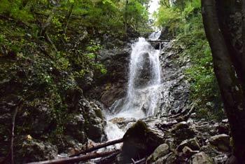 Kobilji curek je najvišji slap na dolenjskem. Nahaja se v grapi pritoka potoka Robarice in je visok 30 metrov.