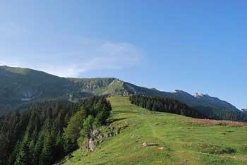 Na Kofcah, izhodišču na Veliki vrh se bomo odlično okrepčali v planinskem domu.