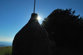 Kojca je znana po vasici Zakojci, kjer se je rodil France Bevk.
