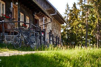 Kolesarski izlet nas bo popeljal skozi mogočne gozdove Pohorja od Rogle vse do Klopnega vrha.