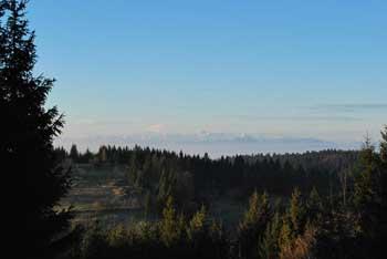 Krožna pot Koščake je izlet v naravi, kjer se lepo vidi Snežnik z okoliškimi hribi.