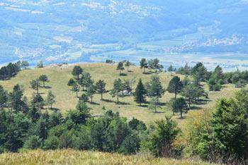 S Kovka, ki se nahaja na rob Trnovskega gozda se odpre razgled na Vipavsk dolino, Kras, Tržaški zaliv in Koprska brda.