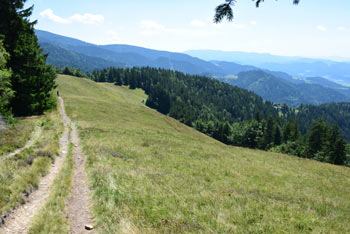 Kremžarjev vrh se nahaja visoko nad dolino Mislinje. Pod poraščenim vrhom se odpre je razgledna Košenica na dolino Mislinje.