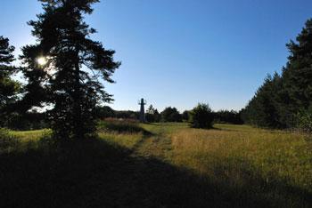 Kucelj nad Višnjo goro je prostran travnat vrh nad potokom Višnjico in Gradiščem.