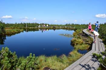 Na Lovrenska jezera se odpravimo z Rogle. So največja naravna znamenitost Pohorja in priljubljen cilj družin z majhnimi otroki.