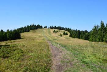 Mala Kopa je eden najvišjih vrhov na Pohorju. Pot nanjo nas vodi preko sosednje Velike Kope, naprej pa gre pot za Kremžarjev vrh.