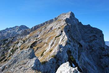 Mala Ojstrica je znana po miniaturnem Aljaževem stolpu na njenem vrhu. Z njega se odpre razgled na Robanov kot, Veliki vrh, Veliko Zelenico in Lučki dedec.