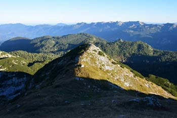 Mala Tičarica ima odličen pogled proti jugu in vzhodu preko Komne na dolg venec Spodnjih Bohinjskih gora, ki je najdaljši greben v Julijskih Alpah.