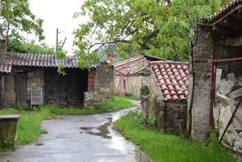 Pavliči je napol zapuščena istrska vasica v zaledju Koprskih brd, izlet do nje pa nas je pripeljal od Mazurinovega mlina.