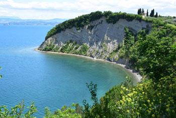 Mesečev zaliv se nahaja pod strmimi flišnimi stenami Strunjanskega klifa.