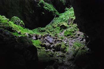 Mrzla jama se nahaja na zahodnem robu Javornikov pod Kršičevcem.
