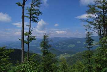 Paški Kozjak je visoko in ozko pogorje nad Dobrno in Vitanjih.