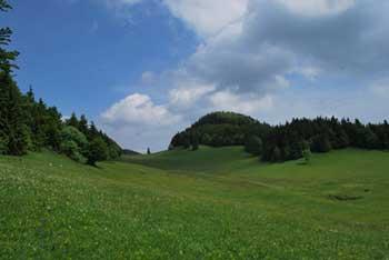 Paški Kozjak je znan po vrhu Basališče, ki se nahaja blizu.