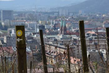 Iz Piramide se odpre najlepši pogled na Maribor. Pešpot nanjo nas vodi iz parka Trije ribniki in med fotogeničnimi vinogradi.
