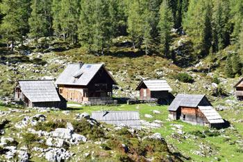 Planina Dedno polje je lahko izvrsten izlet za družine z otroki v samo osrčje Julijskih Alp.