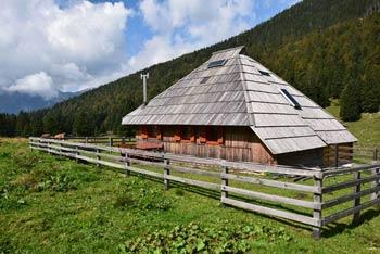 Planina Dol se nahaja v dolini med Veliko planino in gorama Rzenik in Konj v osrčju Kamniško-Savinjskih Alp.