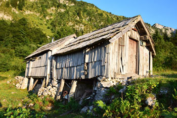 Planina Osredki je deloma zapuščena, nahaja se na na krožni poti s Črne prsti pod brezpotnim Liscem.