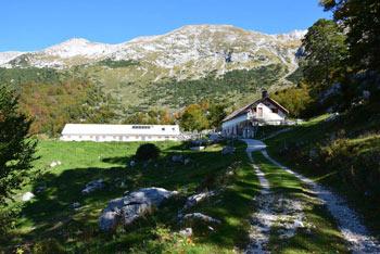 Na planini Razor se nahaja planinska koča in sirarna, kjer lahko poleti kupimo sir.