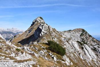 Planina za Migovcem je bila še nedavno opustela, Konjsko sedlo pa je slikovit preval in razpotje na Spodnjih Bohinjskih gorah.