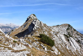 Konjskemu sedlu daje poseben pečat Bohinjski Migovec nad planino za njim.