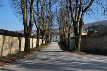 Družinski izlet v naravi nas vodi nad samostan Pleterje, kjer se odpre razgled na hribovje Gorjancev.