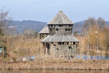 Opazovalnica ptic urejena na bajerju v Logu pod Cerovim.