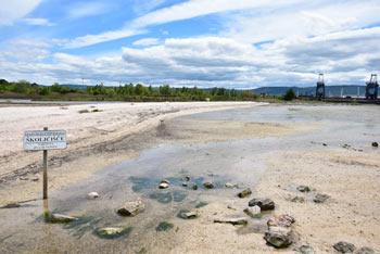 Plitvo morje in plaža pred Pokopališčem školjk je priljubljen nedeljski izlet.