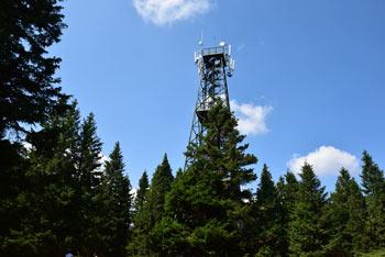 Razgledi stolp na Rogli se dviga visoko nad smrekami osrednjega predela Pohorja.