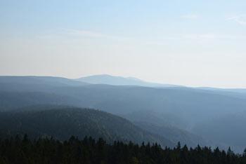 Razgledni stolp na Rogli se ponaša z izvrstnim razgledom na prostrane gozdove Pohorja, ki vzvalovijo povsod okoli nas.