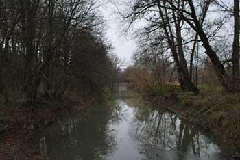 Pot skozi prekmurski Razkriški kot nas vodi ob reki Ščavnici, ki se izlije v Muro.