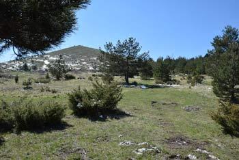 Krožna pot na Razsušico, Glavičorko nas pripelje na vrh, kjer so smerokazi in vpisna skrinjica, razgled pa se odpre na skalnato Medvižico.